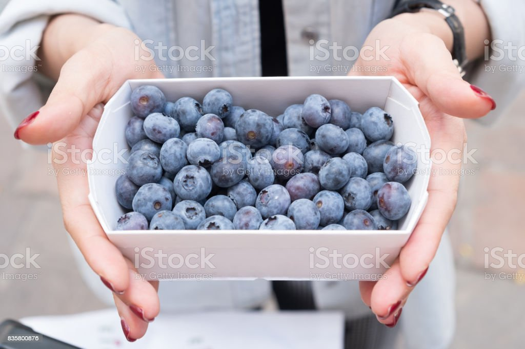 Girl holding paper box full of blueberries ,Fresh indigo colored blueberry are popular summer treats of all time . stock photo