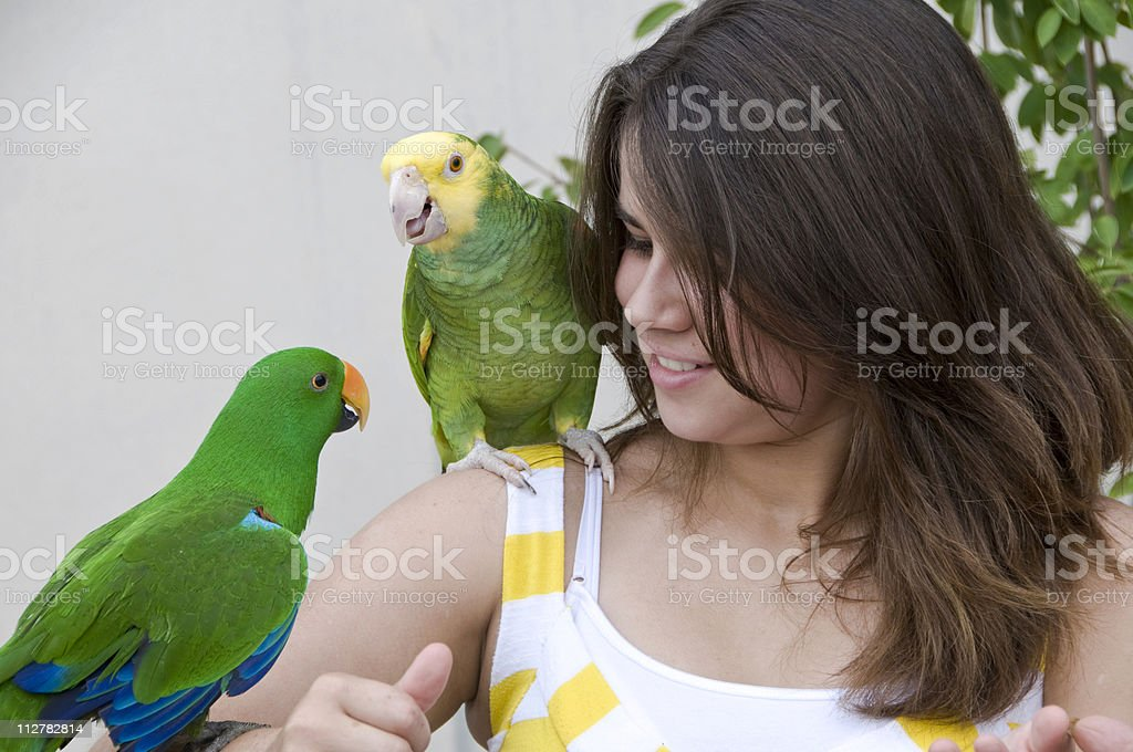 Girl holding parrots royalty-free stock photo