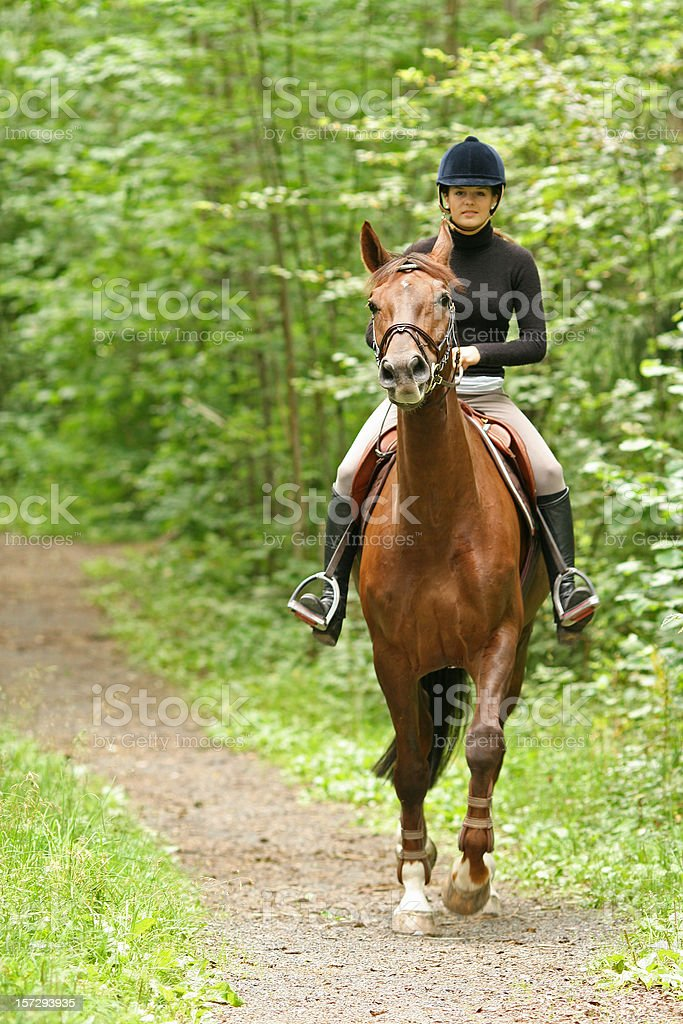 Girl horseback riding in the forest, Norway royalty-free stock photo