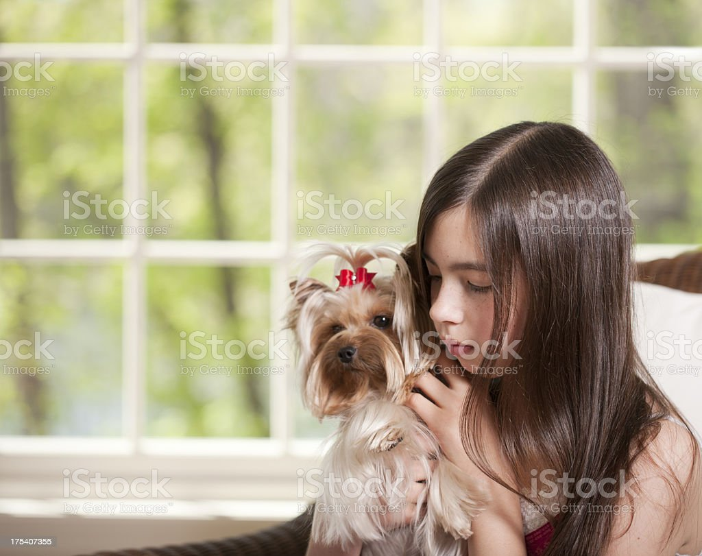 Girl Hugging her Yorkshire Terrier Dog stock photo