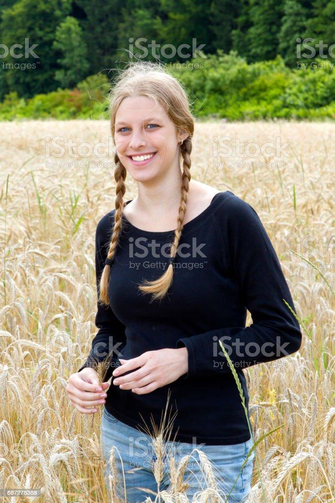 Girl in a corn field stock photo