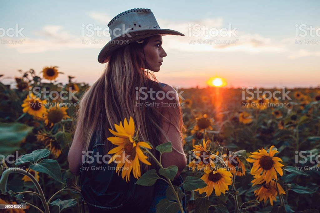 Girl in a cowboy hat in  sunflower field. Sunset stock photo