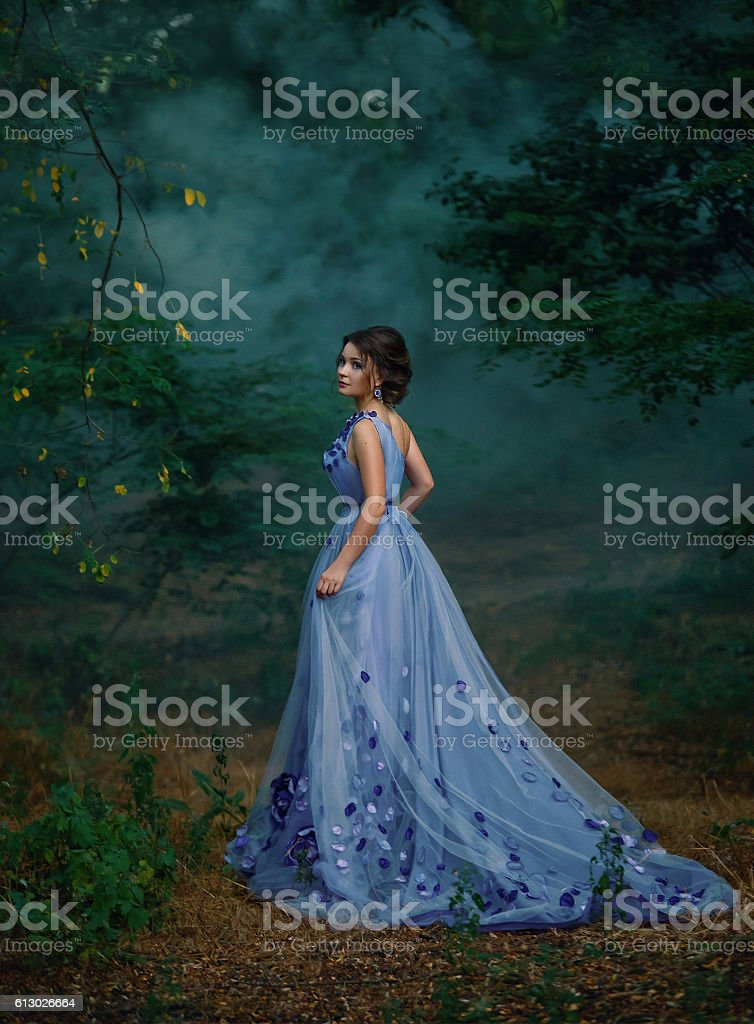 Girl in a long dress,wandering the forest stock photo