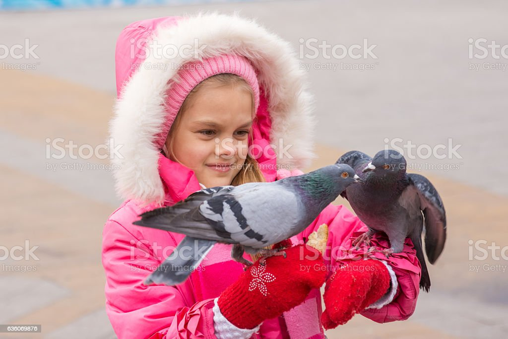 girl in a pink jacket watching pigeons that her hands stock photo