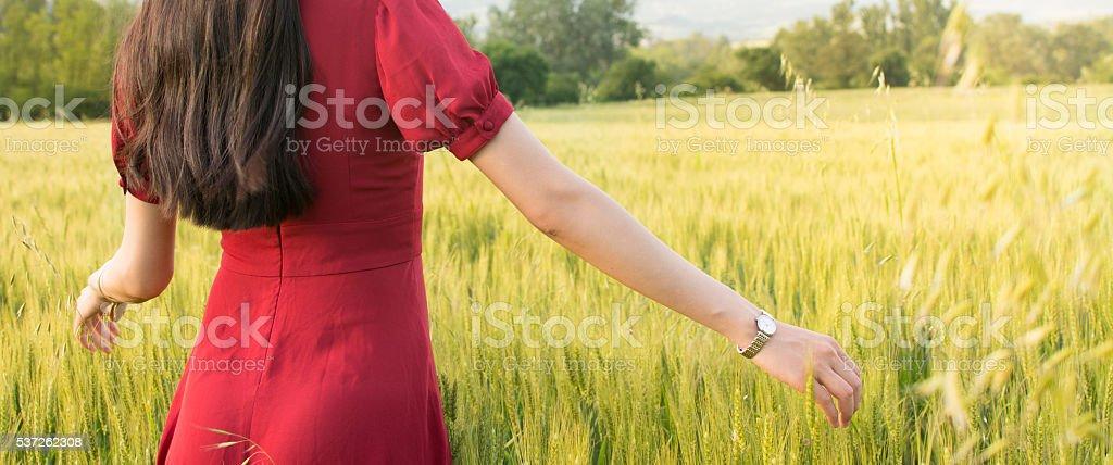 Girl in a wheat field wearing red dress stock photo