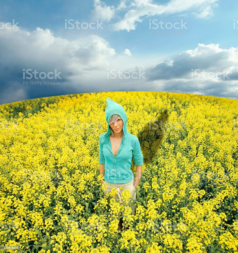 Girl in a yellow field royalty-free stock photo