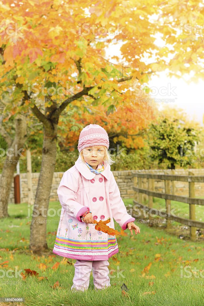 Girl in autumn. royalty-free stock photo
