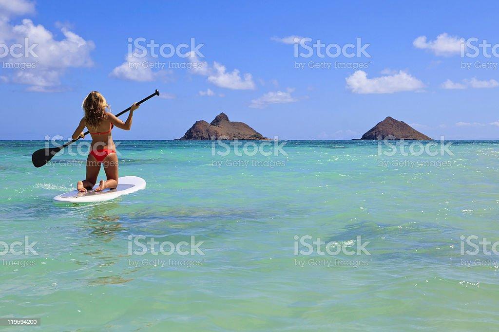 girl in bikini on a paddle board royalty-free stock photo