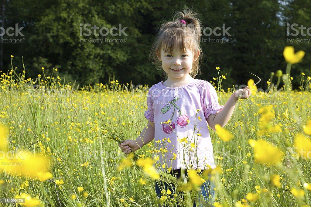 Girl in Buttercup Field royalty-free stock photo