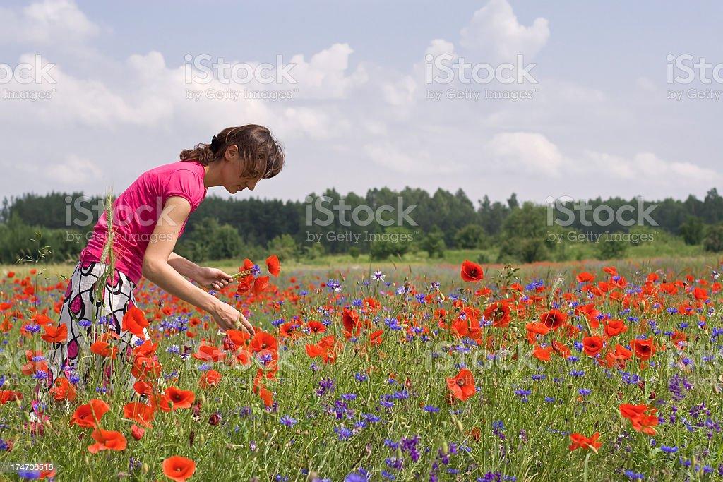 Girl in field flower stock photo