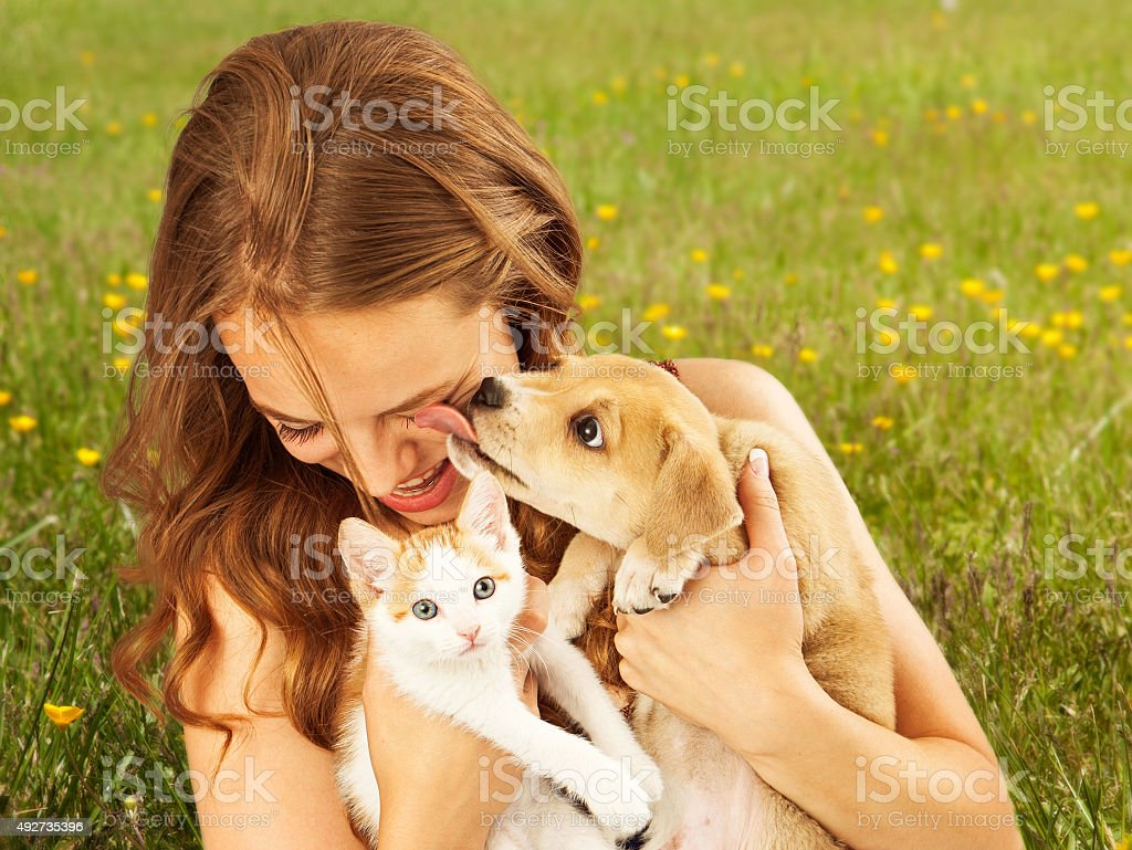Girl in Field With Kitten and Affectionate Puppy stock photo