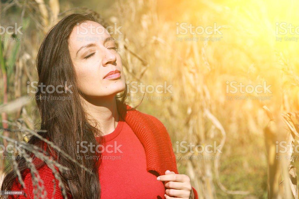 Girl in nature, autumn, sun, beautiful girl stock photo