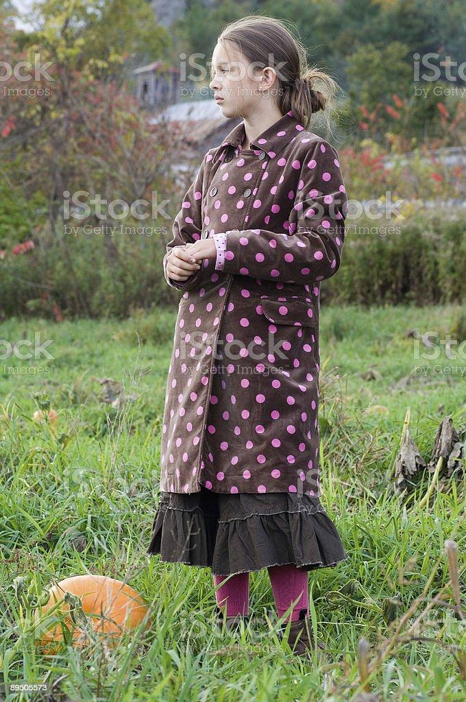 Girl in pumpkin field royalty-free stock photo