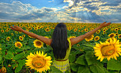 girl in sunflower field in summer with arms raised up