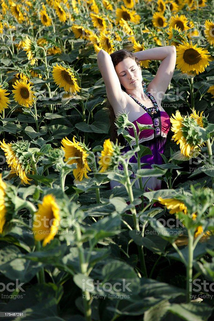 Girl in Sunflower Field stock photo