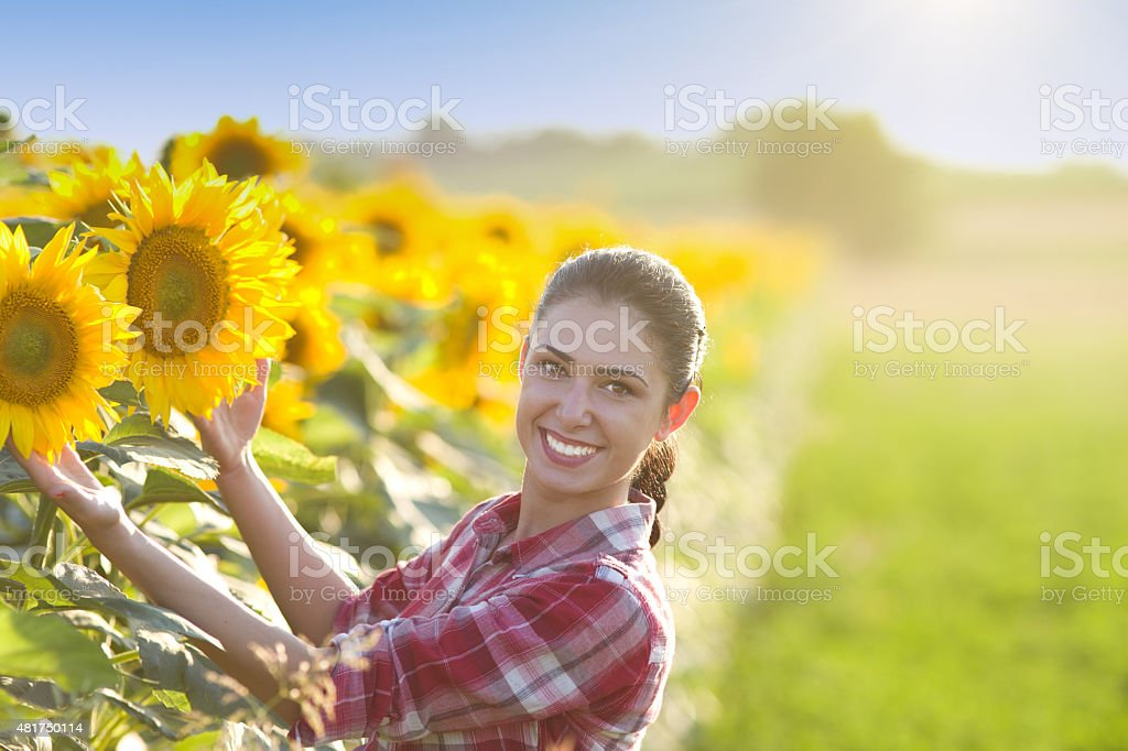 Girl in sunflower field stock photo