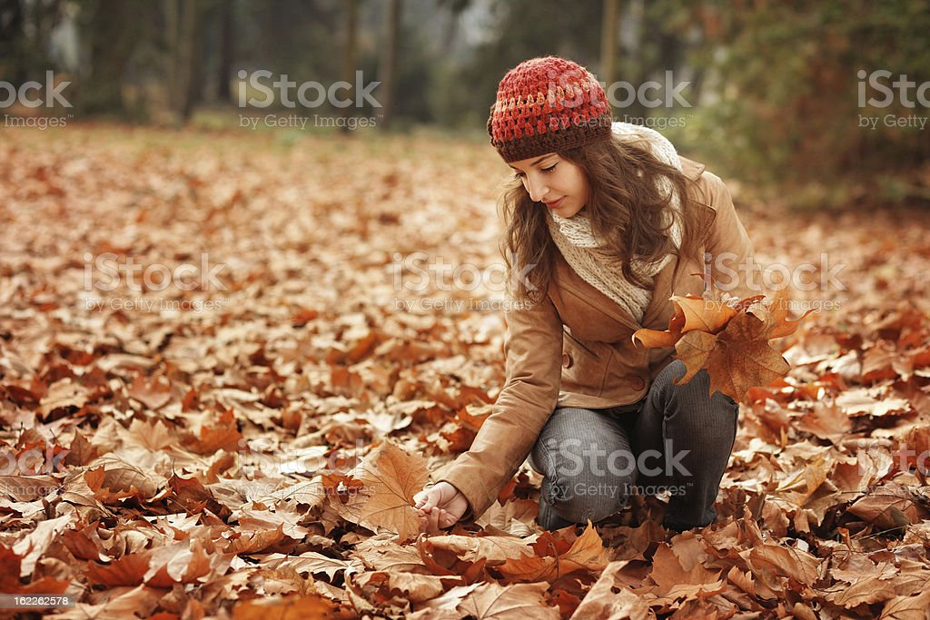 girl in the autumn forest collecting dried leaves royalty-free stock photo
