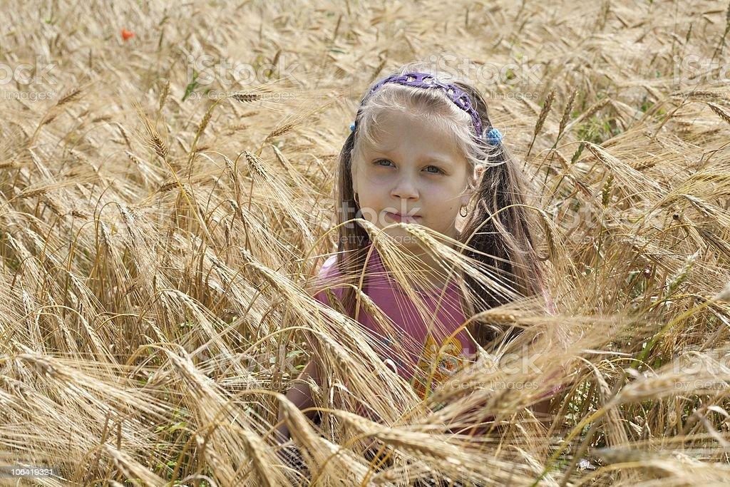 Girl in the field stock photo