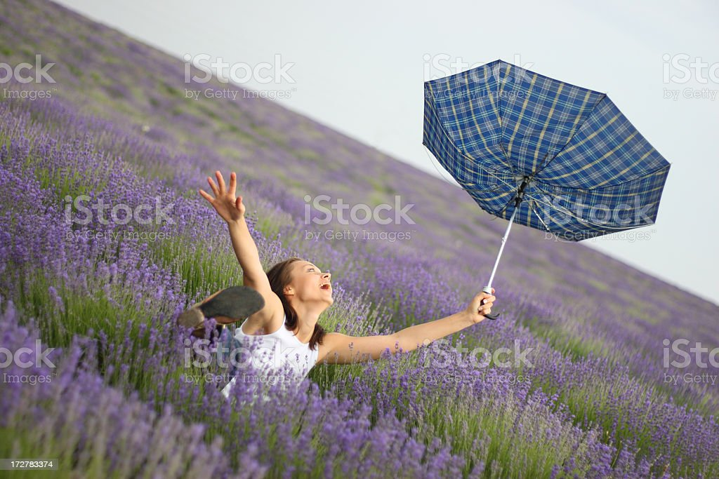 girl in the lavender field royalty-free stock photo