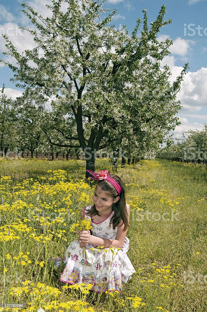 Girl in the sour cherry orchard squatting royalty-free stock photo