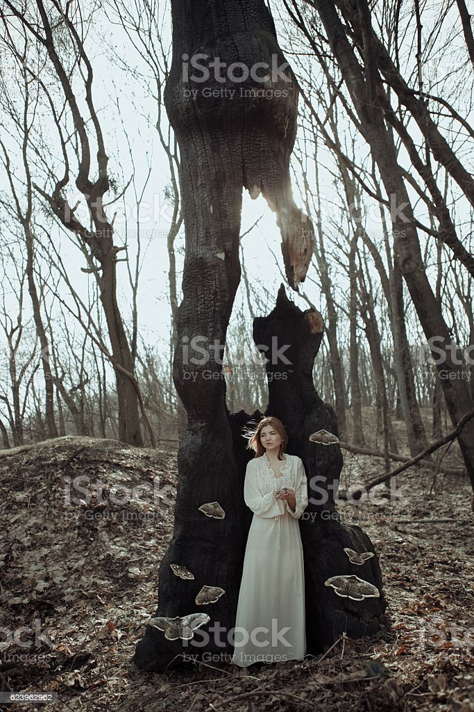 Girl in vintage dress in the sleeping forest stock photo