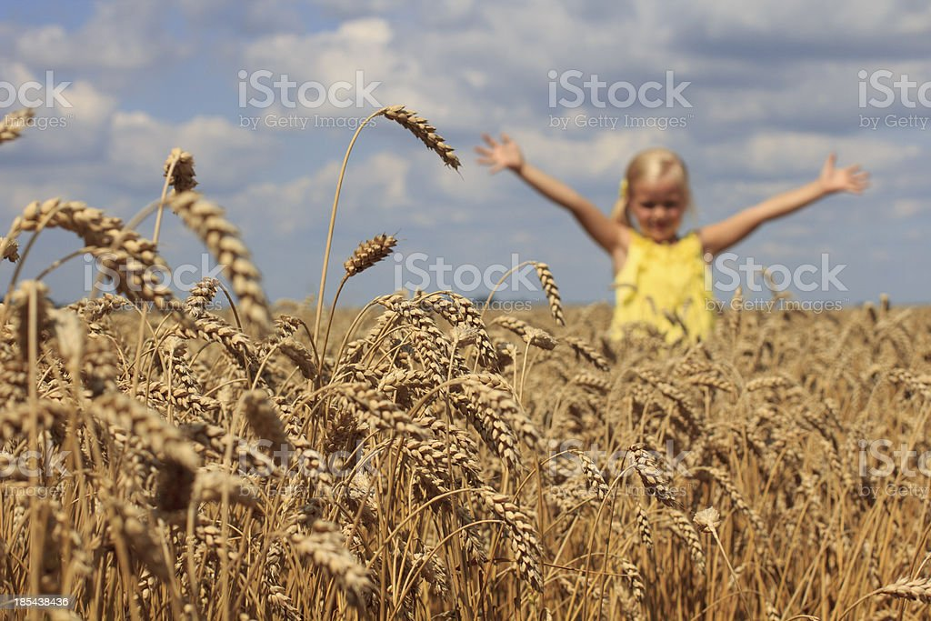 Girl in wheat field royalty-free stock photo