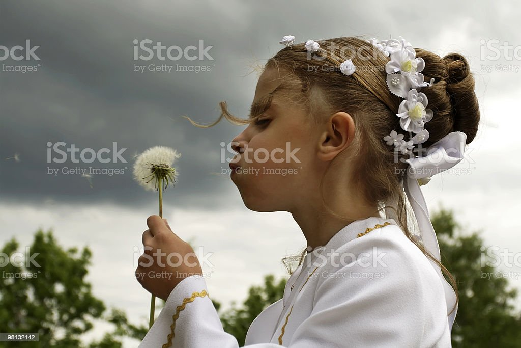 Girl in white holy communion attire blows dandelion seeds stock photo