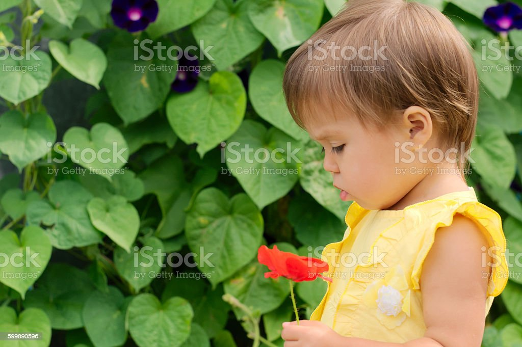 Girl in yellow dress with red poppy flower stock photo