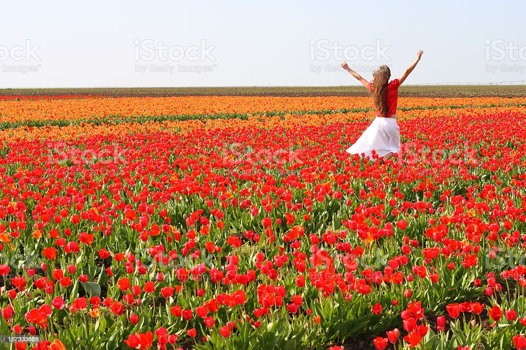 girl is in the field of tulips royalty-free stock photo