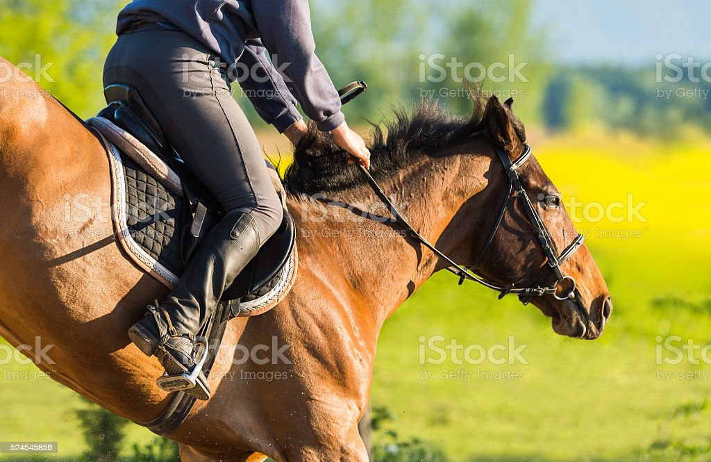 girl jumping with horse stock photo