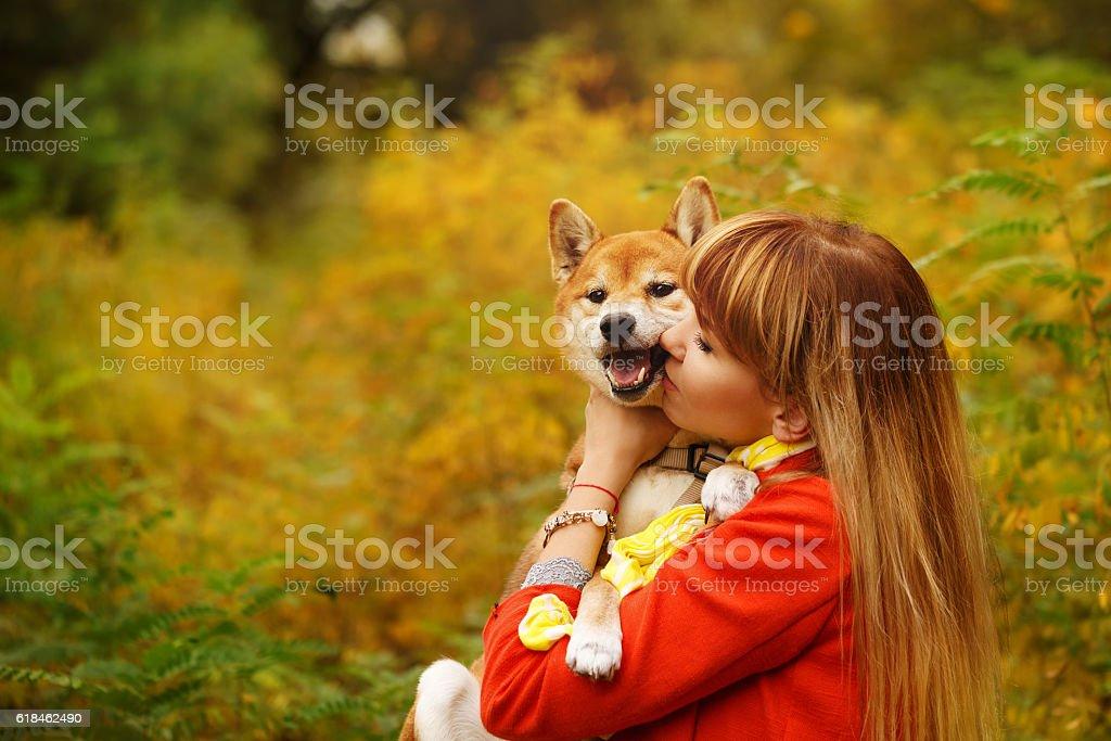 Girl kissing Shiba Inu dog in autumn park. stock photo