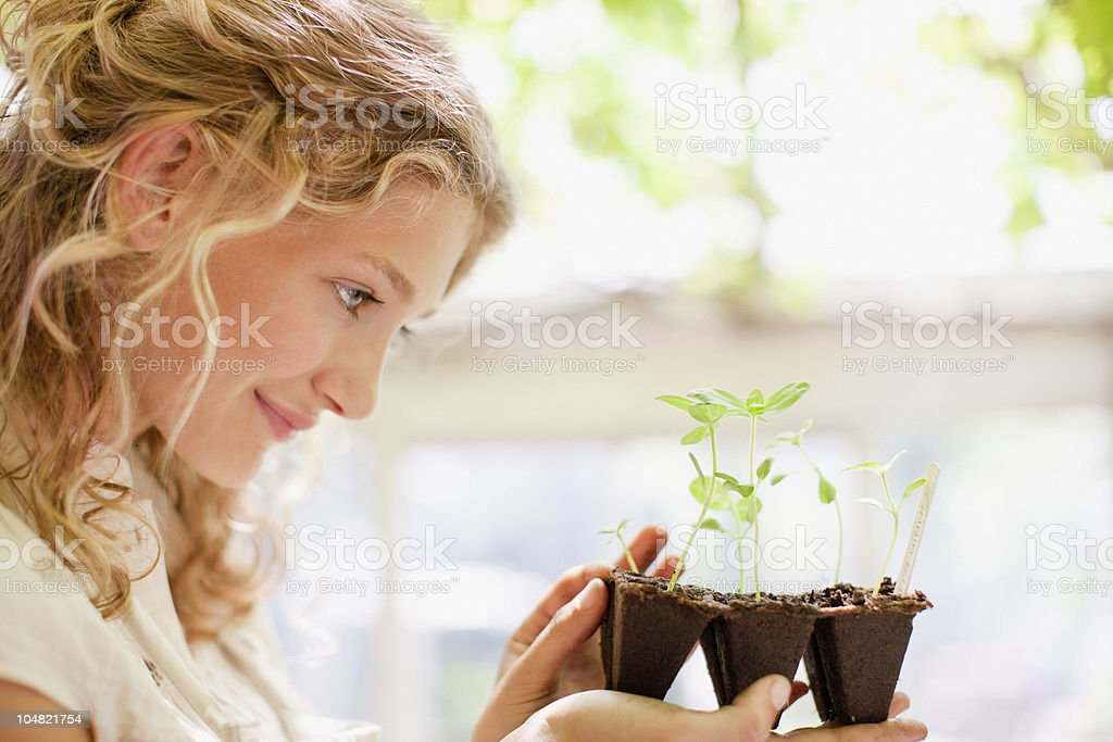 Girl looking at seedlings growing in plastic tray royalty-free stock photo