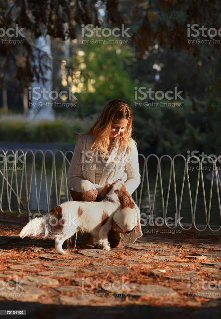 Girl looking Cavalier King Charles Spaniel with love stock photo