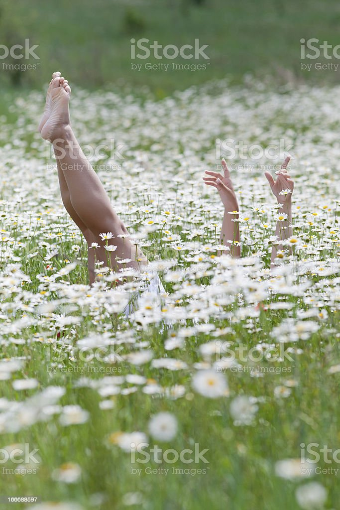 Girl lying on back in chamomile field royalty-free stock photo