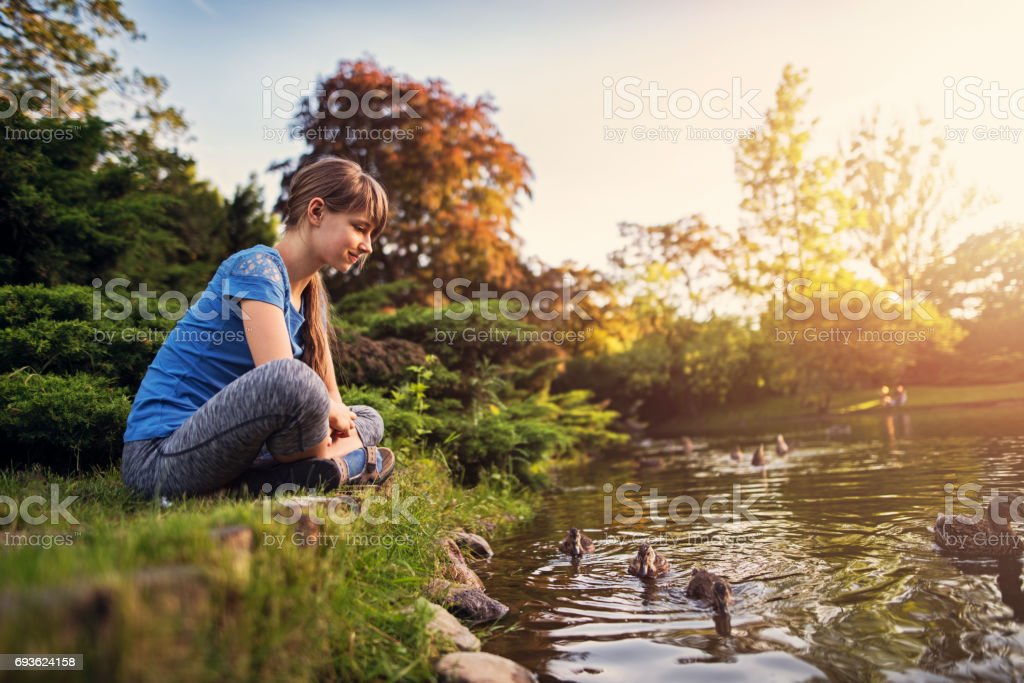 Girl observing ducks swimming in the city park stock photo