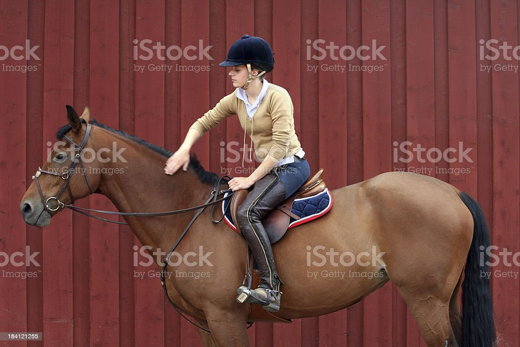 Girl on a brown showjumping horse royalty-free stock photo