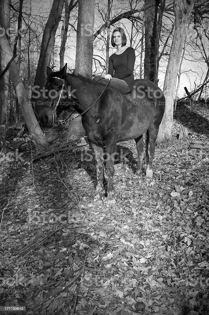 Girl on a horse in forest royalty-free stock photo