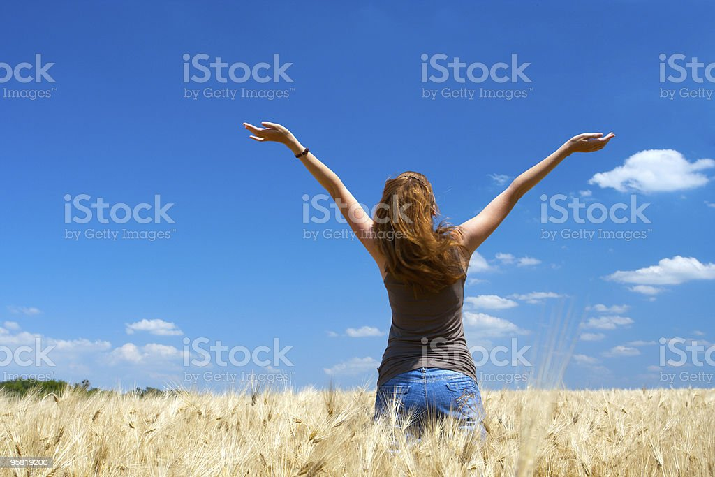 girl on a wheat field royalty-free stock photo