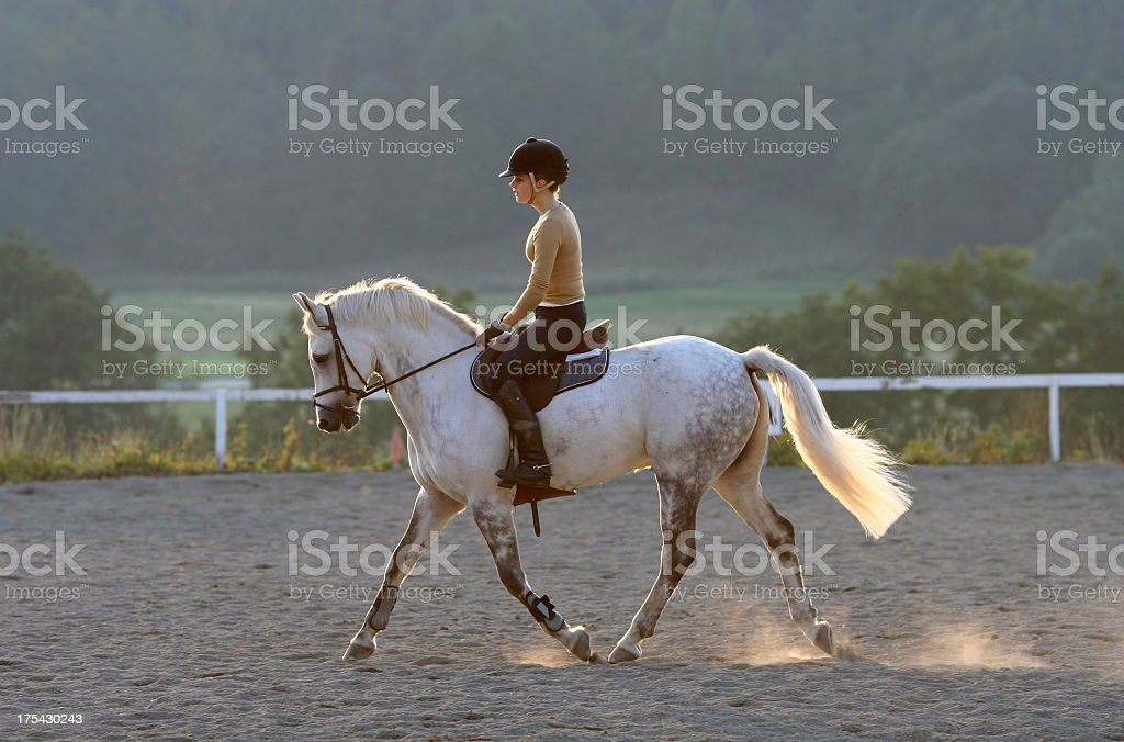 Girl on a White Horse royalty-free stock photo