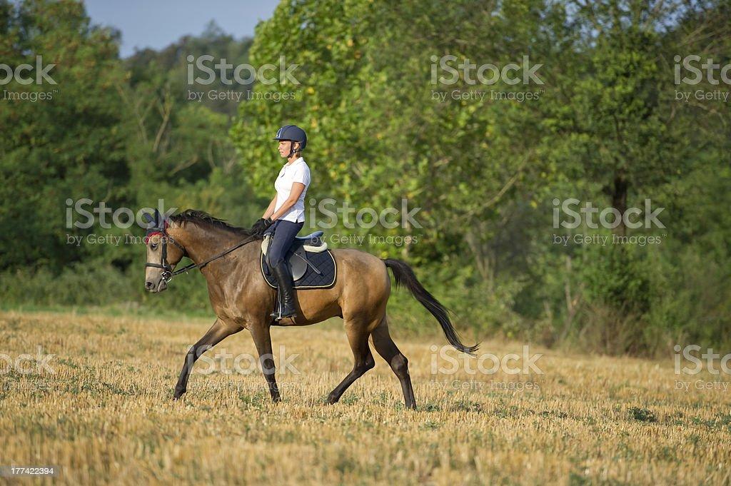 Girl on horse royalty-free stock photo