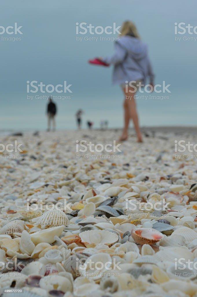 Girl on shell beach stock photo