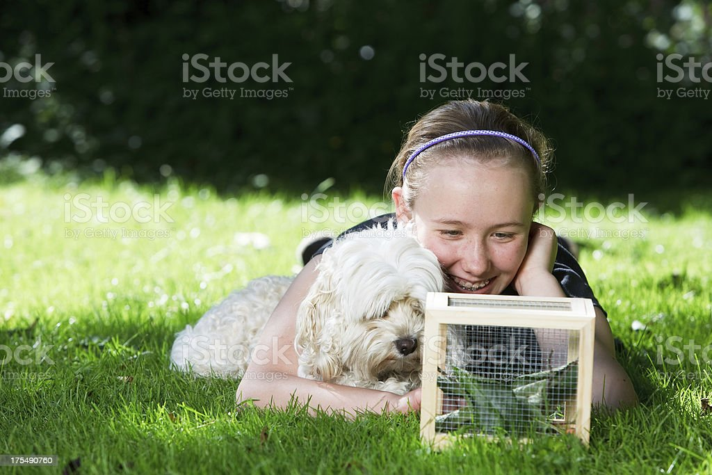 Girl outside looking into a small cage with her dog royalty-free stock photo
