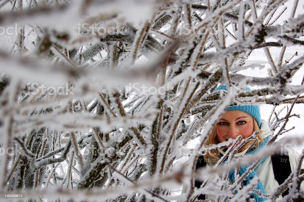 Fille Regarder à la dérobée dans un arbre glacé photo libre de droits
