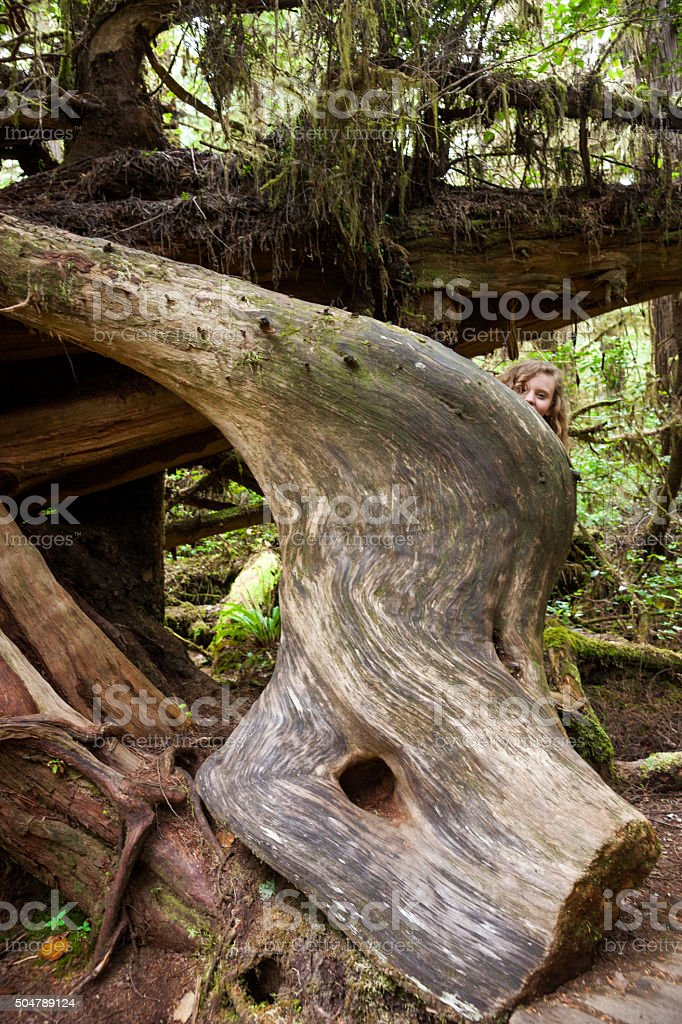 Girl peeks over a giant curved tree trunk stock photo