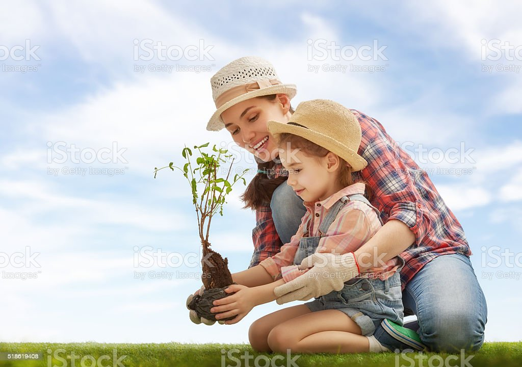 girl plant sapling tree stock photo