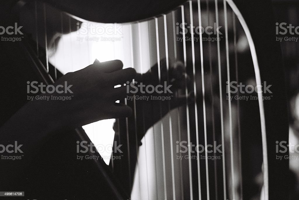 Girl Playing the Harp stock photo