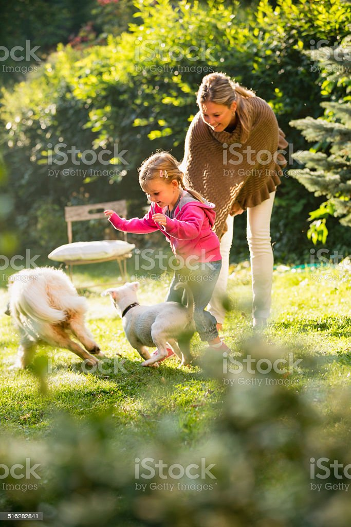 Girl playing with dogs in garden mother standing aside stock photo