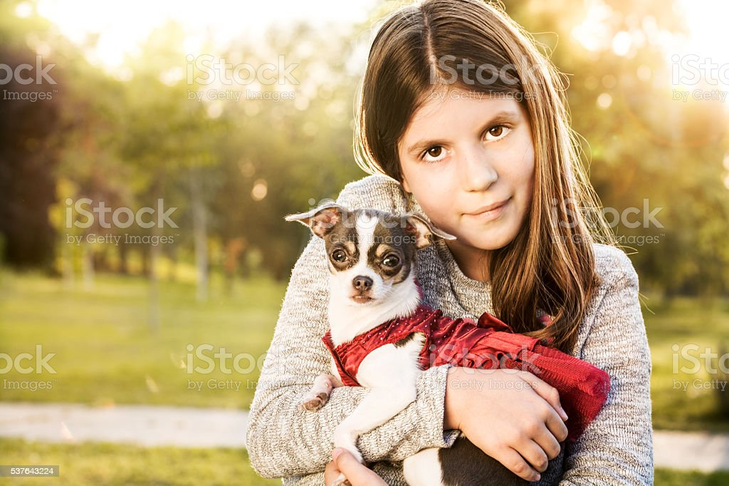 Girl posing with her dog - cute Chihuahua stock photo