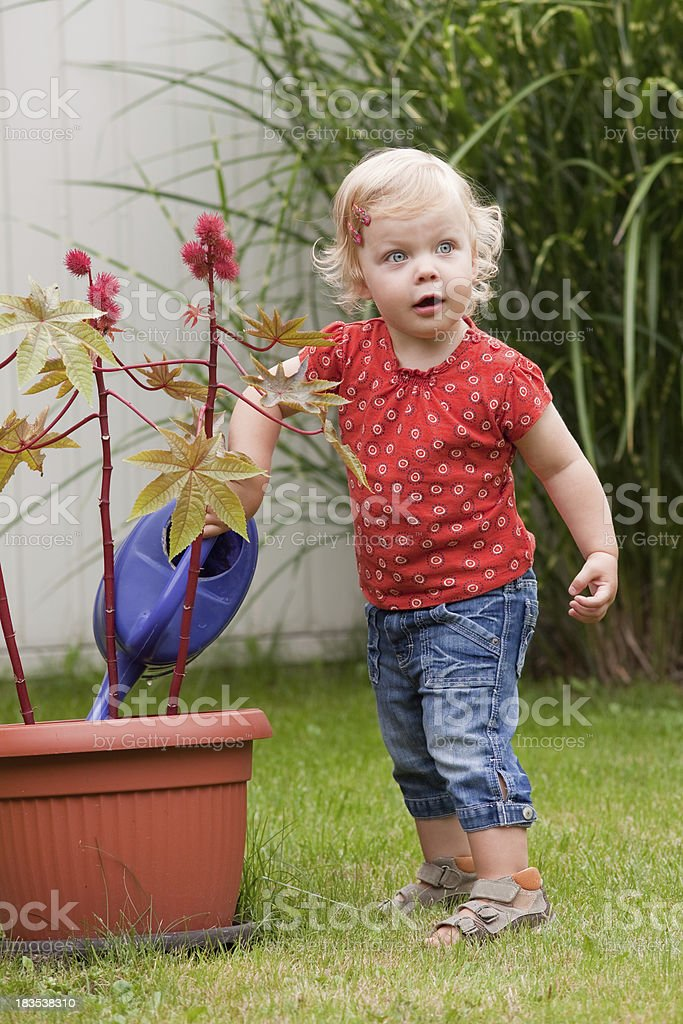girl pouring plant stock photo