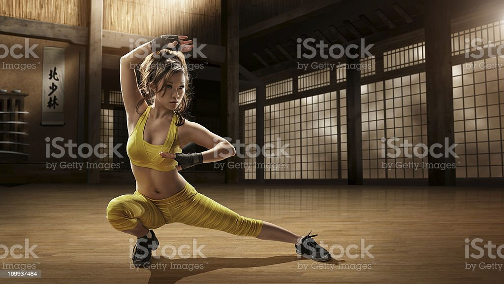 Girl Practising Martial Arts in Dojo stock photo